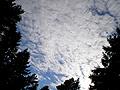 Облака №14